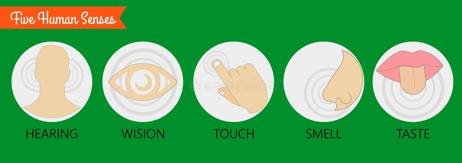 Set of five human senses: vision (eye), smell (nose), hearing (ear), touch (hand), taste (mouth with tongue) . Vector illustration royalty free illustration