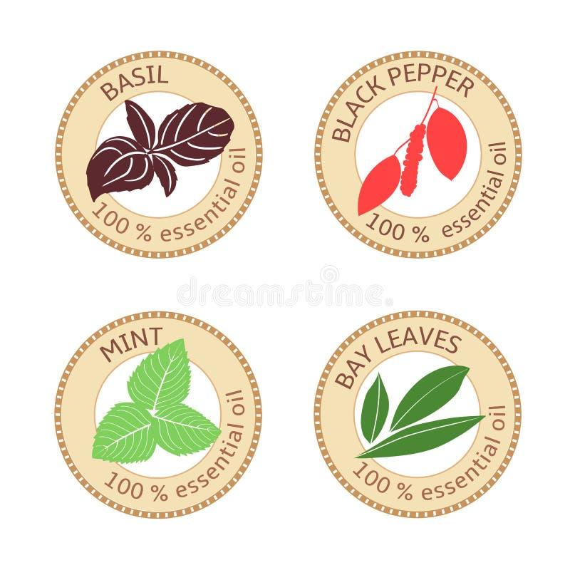 Set of flat essential oil labels. 100 percent. Bay leaves, basil, black pepper, mint stock illustration