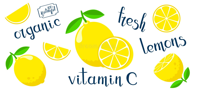 Set with flat style lemons stock illustration