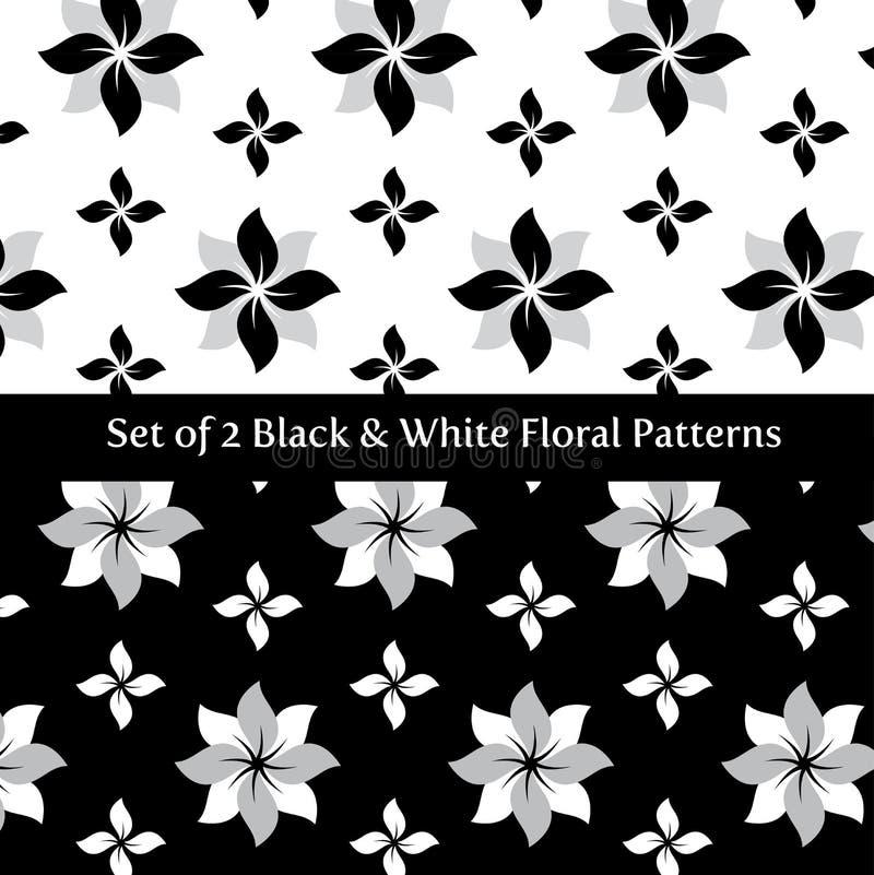Set of 2 Floral Black vector illustration