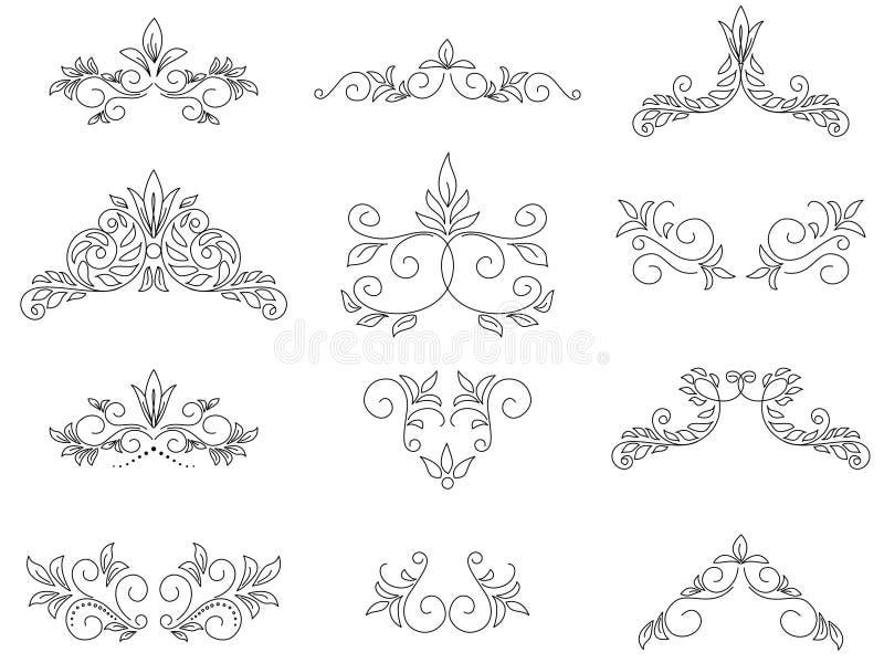 Set - floral design elements - vector stock illustration