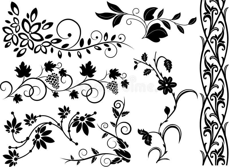 Set of floral elements vector illustration