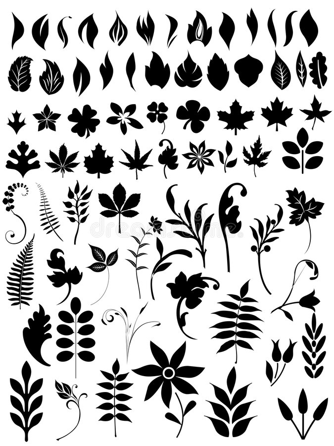 Set of floral elements and bunches stock illustration