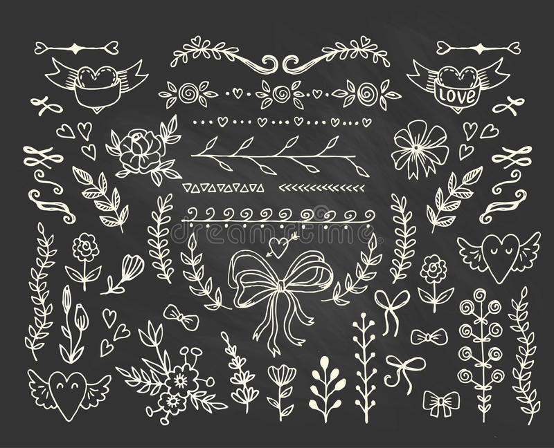 Set of floral elements on the chalkboard. vector illustration