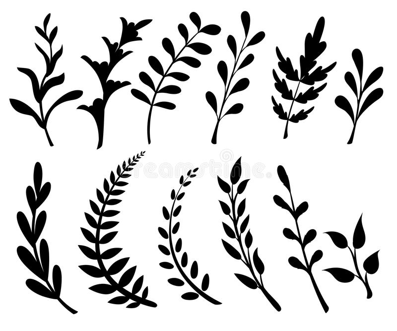 Set with floral elements and leaves.decorative elements for your design. Leaves, swirls, floral Flat design style illustrat vector illustration