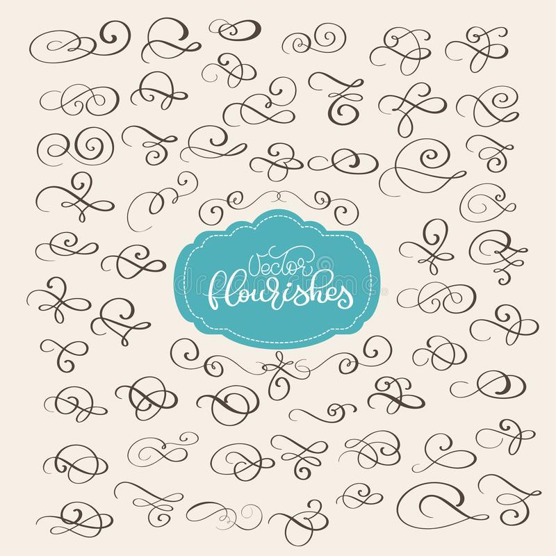 Set of Flourish swirl ornate decoration for pointed pen ink calligraphy style. Quill pen flourishes. For calligraphy. Graphic design, postcard, menu, wedding royalty free illustration