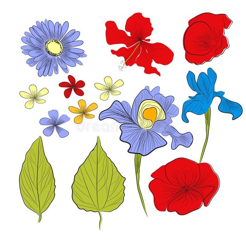 Set of flowers. Fully editable decorative illustration vector illustration