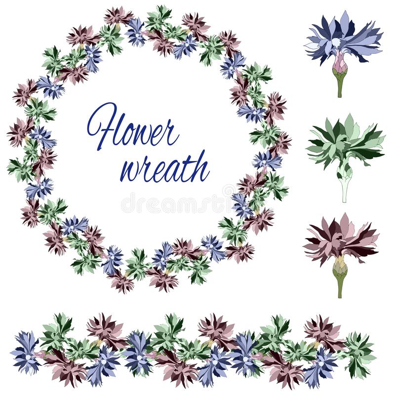 Set of flowers and buds on a white background. Flower wreath of cornflowers. Vector brush.  stock illustration