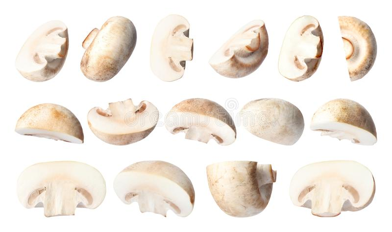 Set of flying cut fresh mushrooms on white stock photography