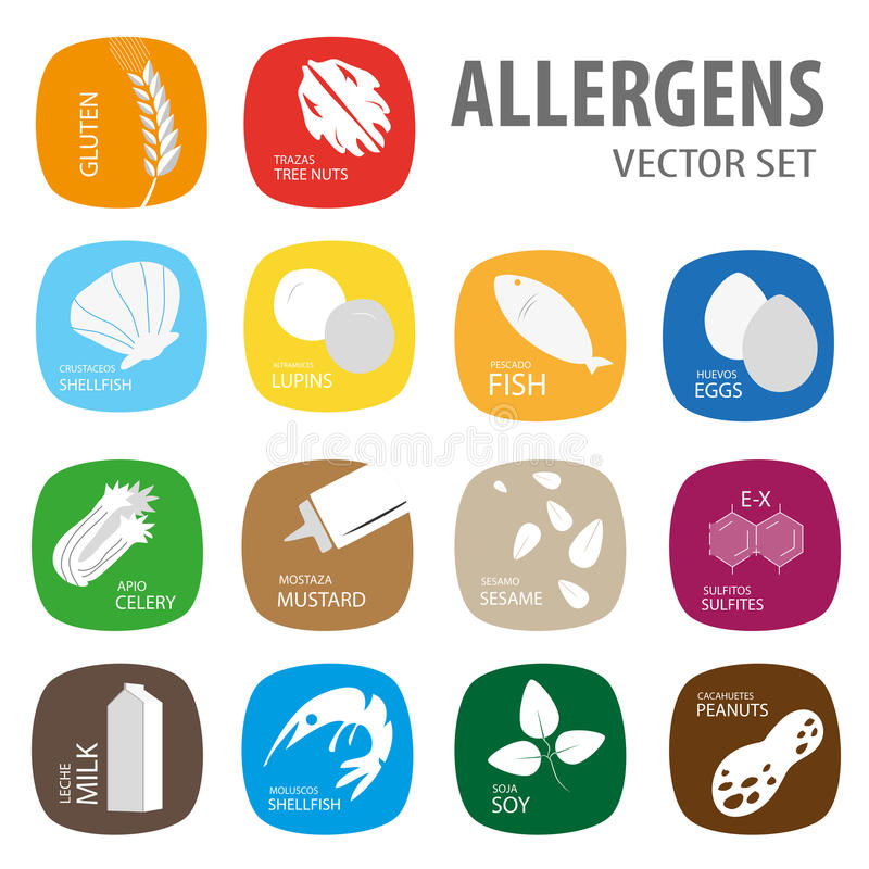 Set of food allergies. Food allergies icons vector set stock illustration