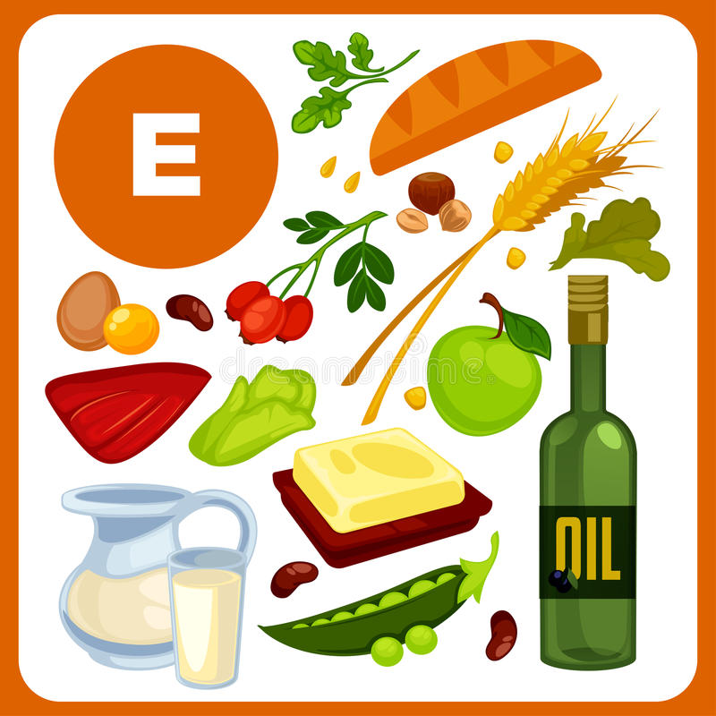 Set food with vitamin E. Set with illustrations of food with vitamin E. Ingredients for health: oil, bread and butter, pea, liver, rose hips. Healthy nutrition vector illustration
