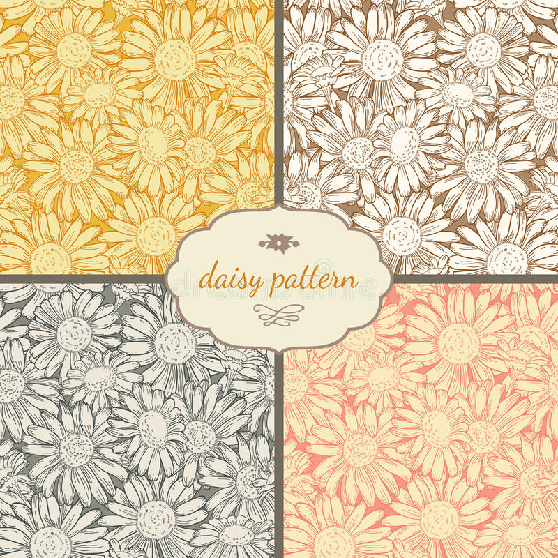 Set of four seamless daisy patterns vector illustration