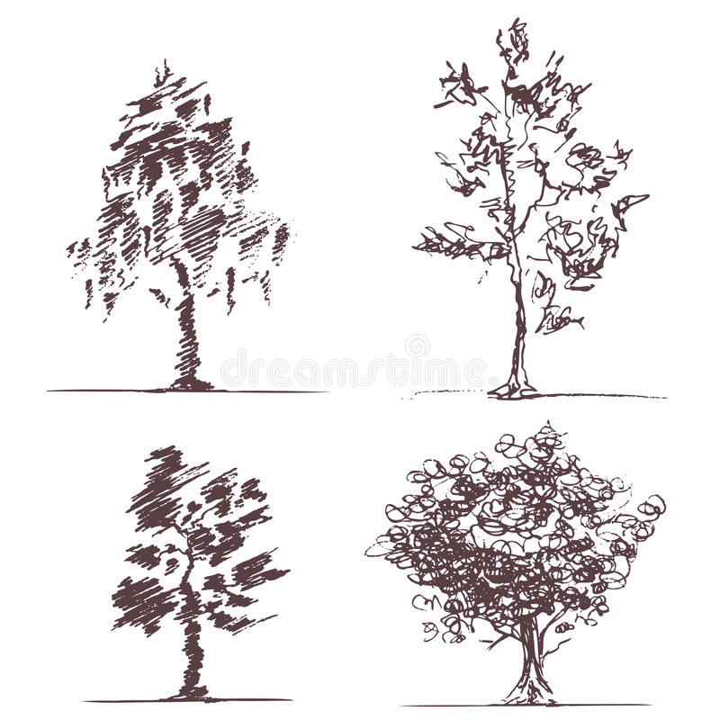 Set of four sketches trees vector illustration