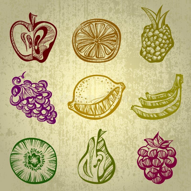 Set Früchte vektor abbildung