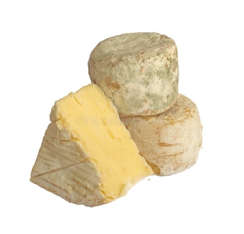 Set französische smelly Käse, getrennt stockbild