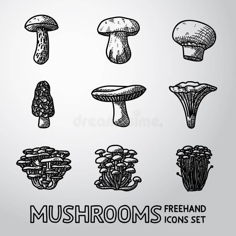 Set of freehand mushroom icons - porcini royalty free illustration