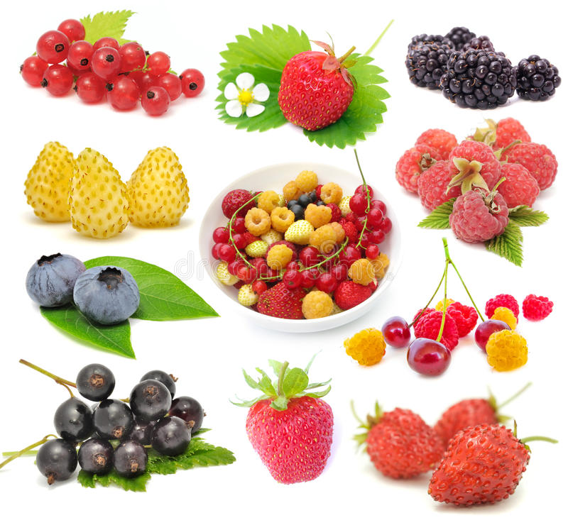 Set of Fresh Berries. Set of red and black currants, strawberries, blackberries, white and red wild strawberries, blueberries, red and yellow raspberries and stock image