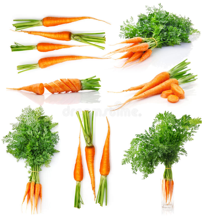 Set fresh carrot fruits with green leaves royalty free stock images
