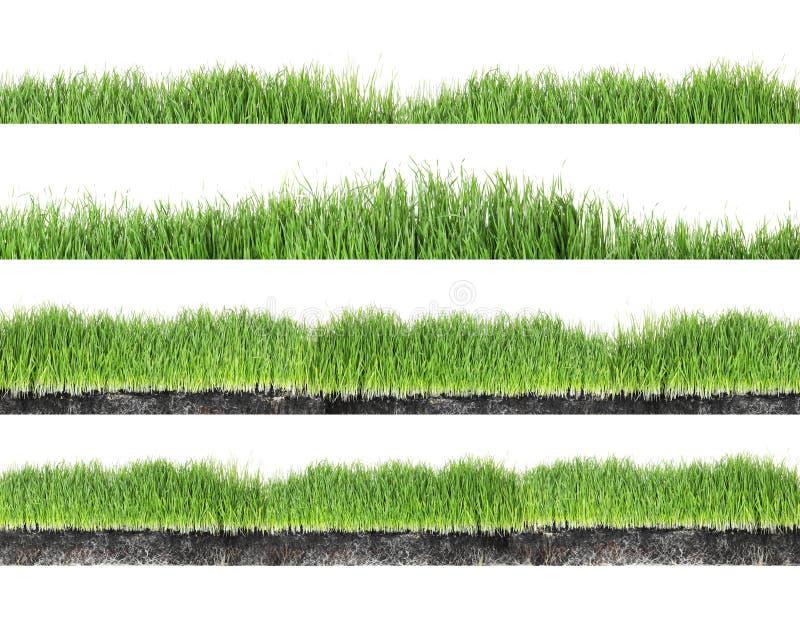 Set of fresh green grass on white stock illustration