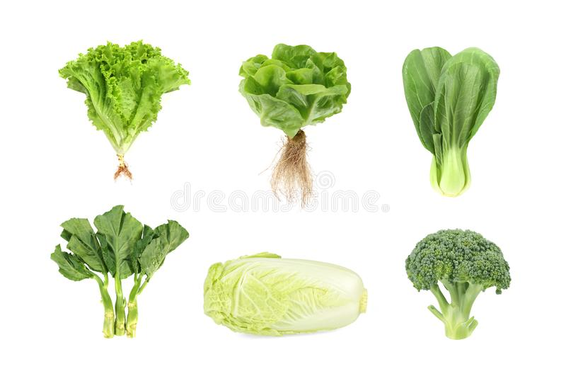 Set of fresh green vegetables isolated on white background royalty free stock images