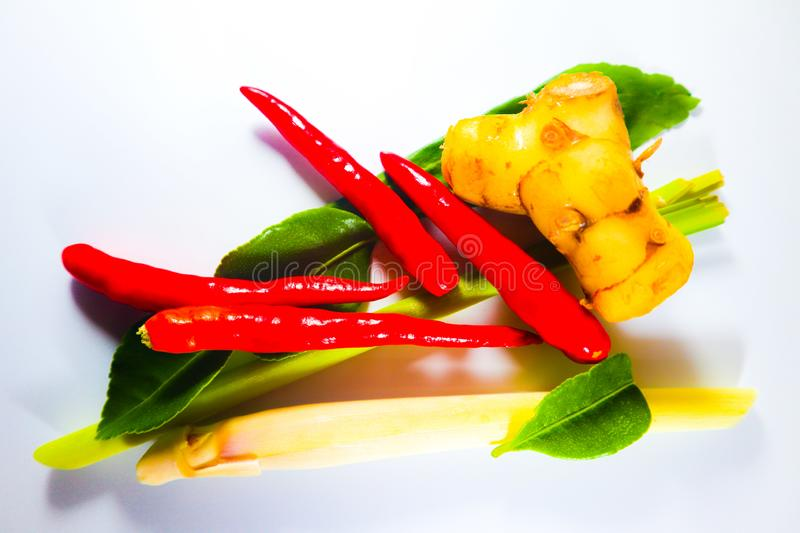 Set of Fresh Herbs and Ingredients of Thai spicy food or tom yum on white isolated background stock photography