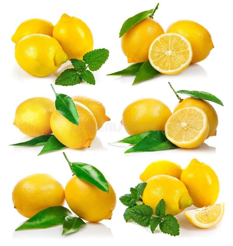Set fresh lemon with green leaf mint stock photos