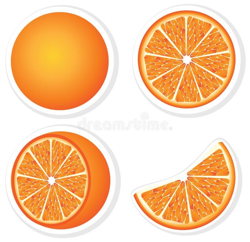 Set fresh orange. Fruits and slices vector illustration