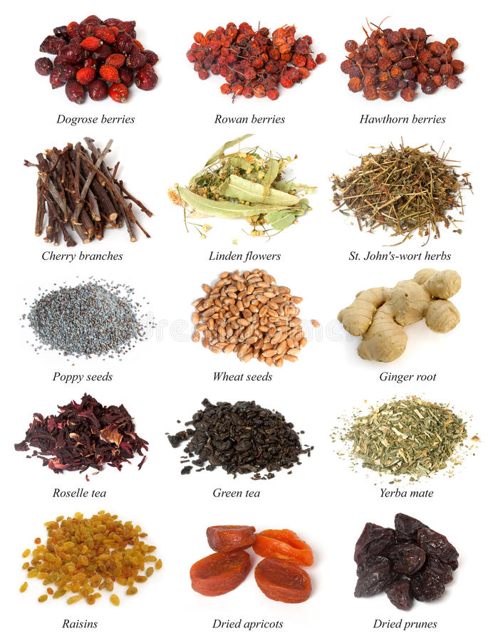 Free Set From Dried Herbs, Berries And Seeds Royalty Free Stock Image - 17846906