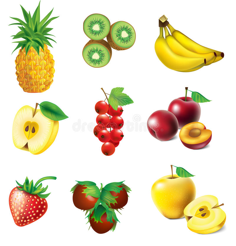 Set Frucht lizenzfreie abbildung