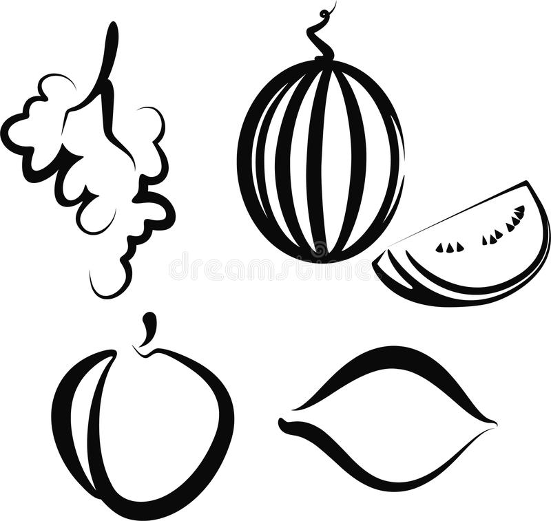 Download Set of  fruit stock vector. Image of fruit, meal, drawing - 17385349