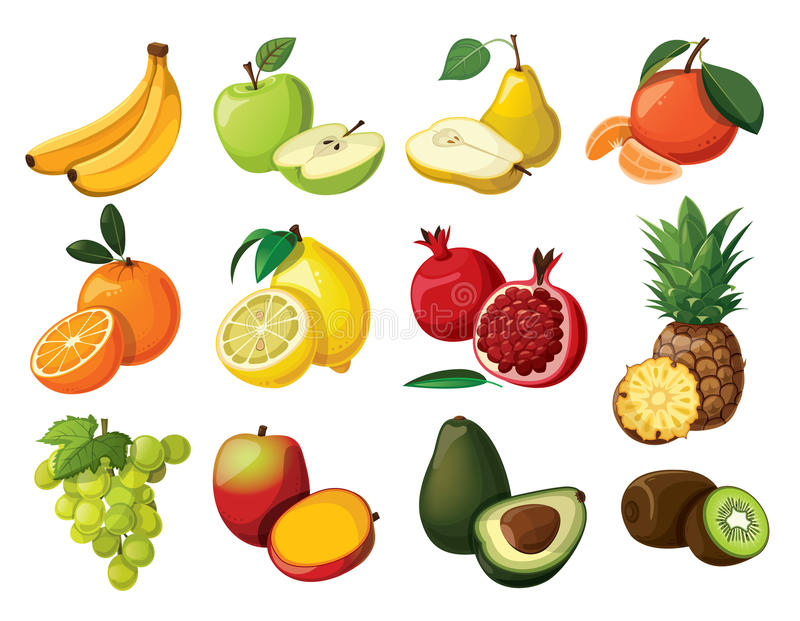 Set of fruit. A set of delicious fruit. Isolated on white background vector illustration