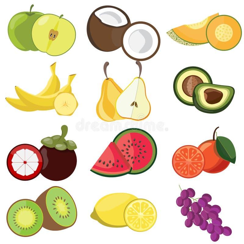 Set of fruit icon vector illustration
