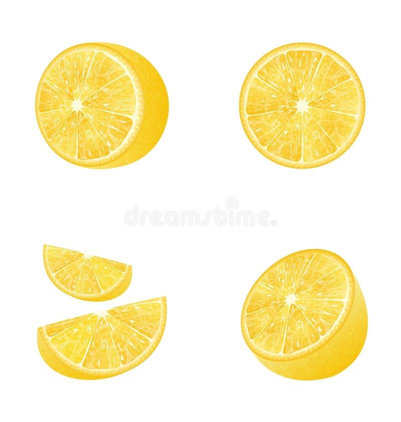Set of Fruit Lemons. Illustration Set of Fruit Lemons on White Background, Photo Realistic Fruits - Vector vector illustration