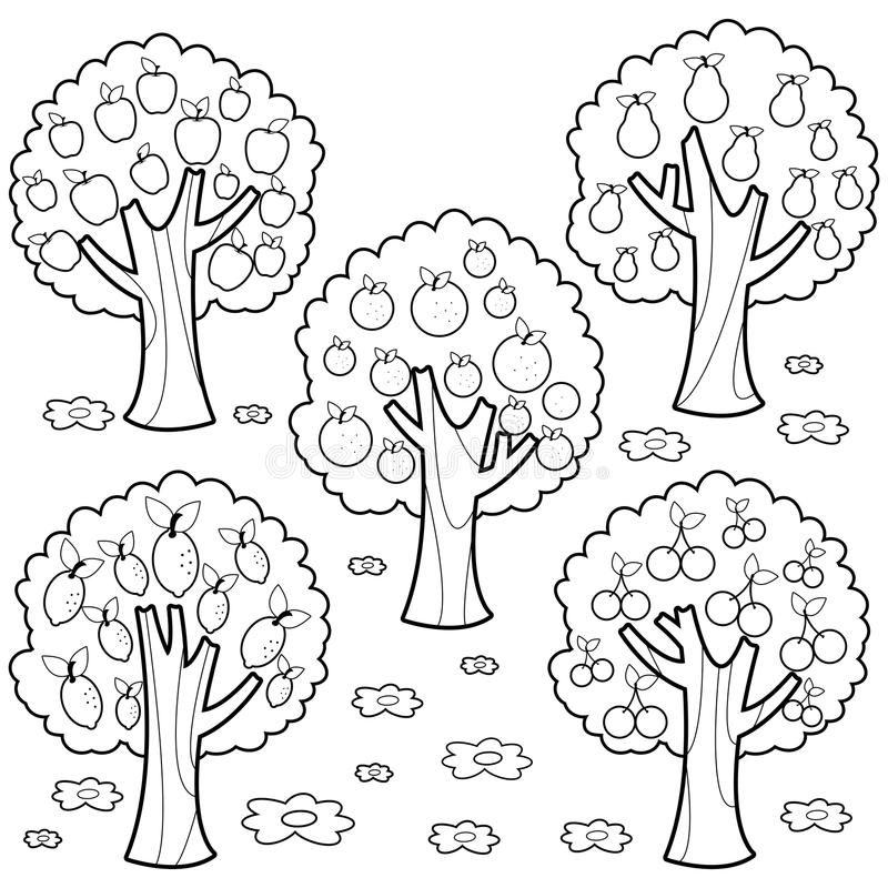 Fruit trees. Black and white coloring book page stock illustration