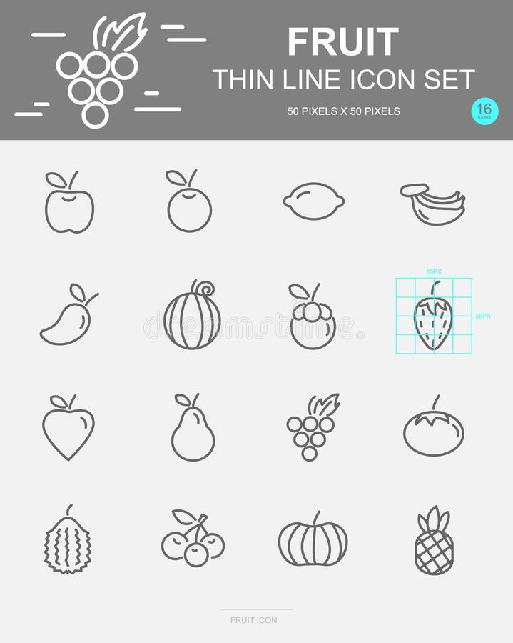 Set of Fruit Vector Line Icons. Includes pineapple, orange, strawberry, apple and more. 50 x 50 Pixel. Set of Fruit Vector Line Icons. Includes pineapple, orange vector illustration
