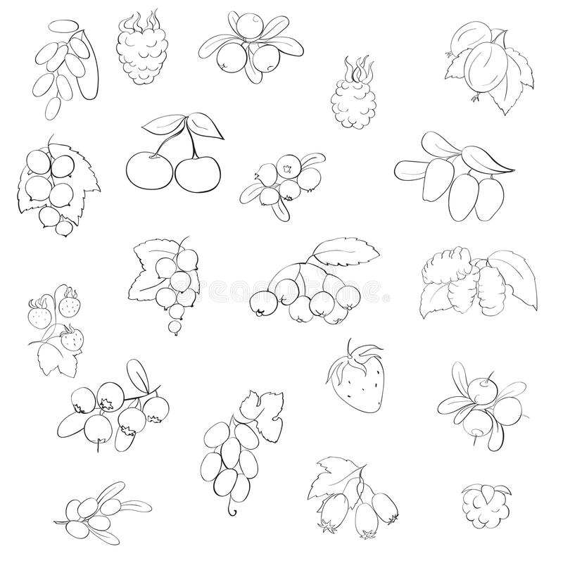 Set fruits and berries. Graphics, vector illustration,isolated on a gray background stock illustration