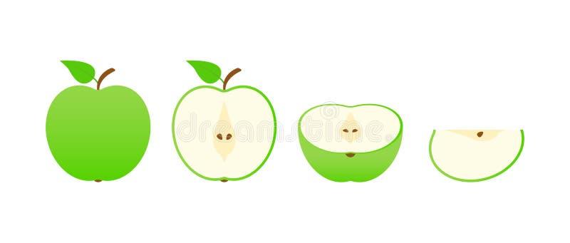 Set of fruits. Summer fruit collection. Fruits apple. Vegetarian and ecology food. Vector illustration stock illustration