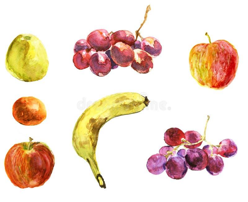 Set of fruits. Vegetarian food. Banana, apples, tangerine, grapes vector illustration