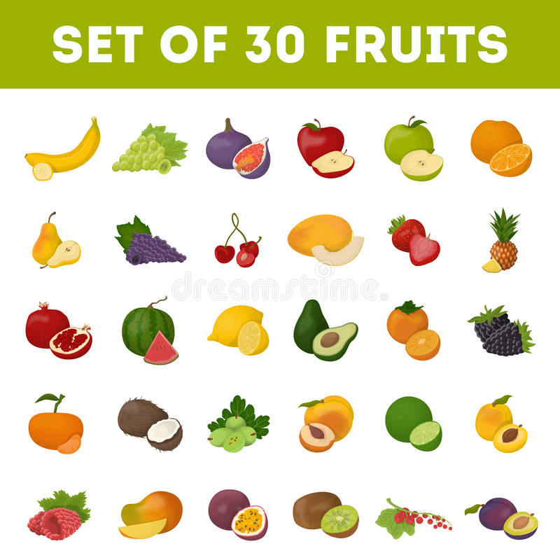 Set of fruits. vector illustration