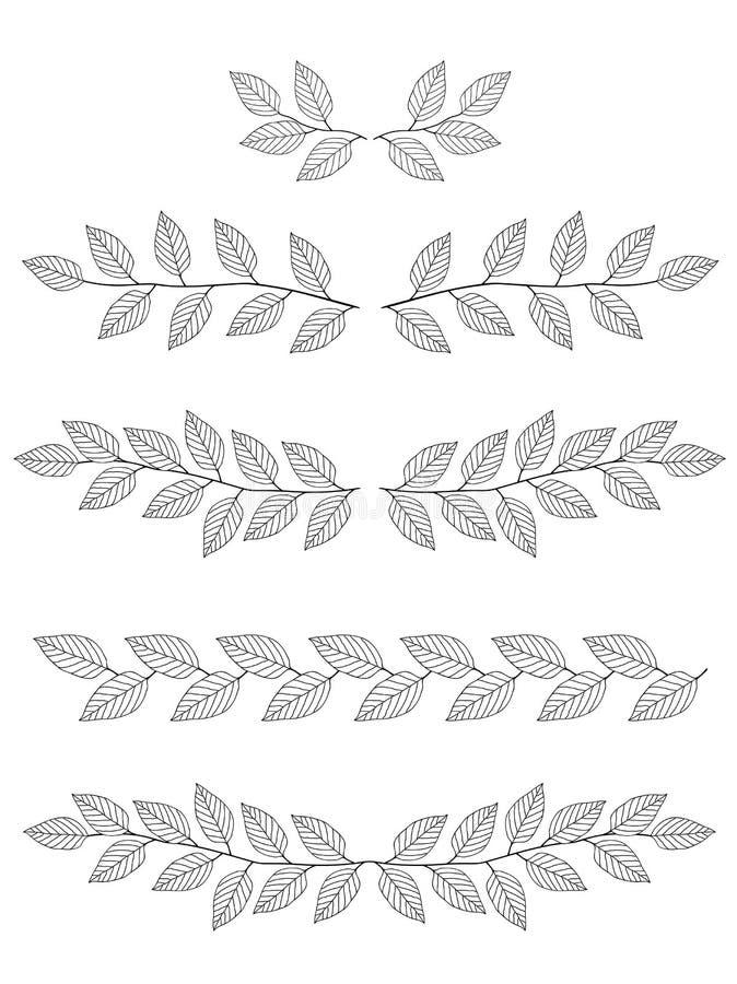 Set gałąź dividers ilustracji