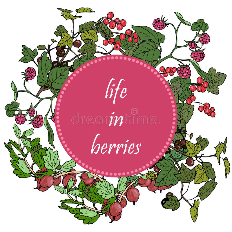 Set of garden berries and green twigs in circle badge, blackberry, raspberry, red currant, gooseberry. royalty free illustration