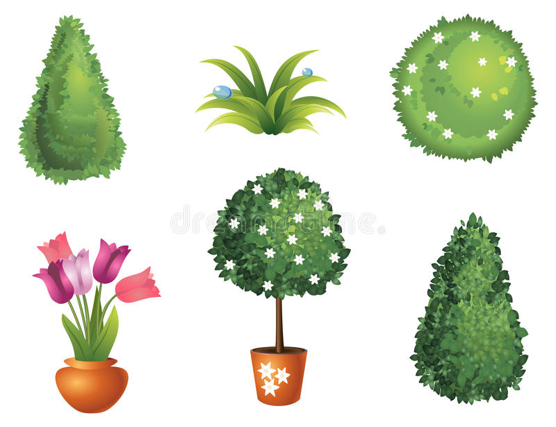 Set of garden plants. With flowers and leaves