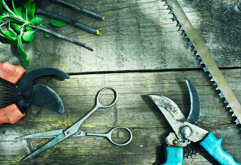 Set of garden tools. Pruning in the garden. stock images