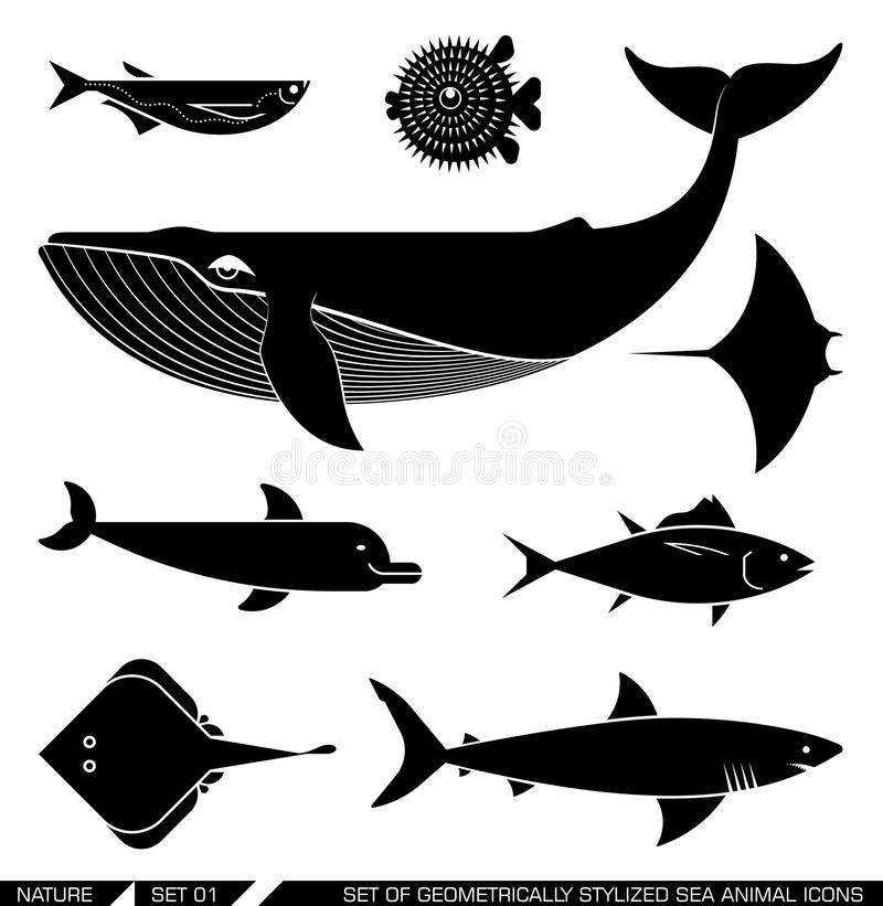 Set of geometrically stylized sea animal icons. Set of various sea animal icons: whale tuna dolphin shark fish rajiforme. Vector illustration vector illustration