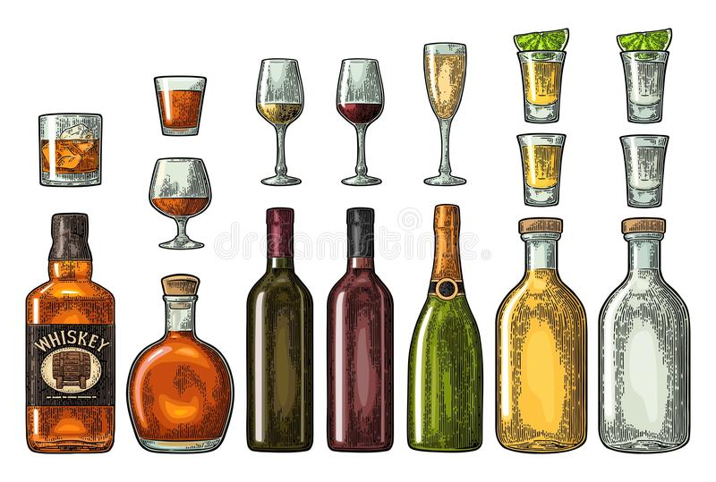 Set glass and bottle whiskey, wine, tequila, cognac, champagne. Vector engraving vector illustration