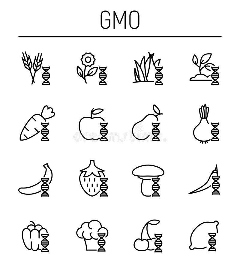Set of GMO icons in modern thin line style. High quality black outline biology symbols for web site design and mobile apps. Simple GMO pictograms on a white royalty free stock images