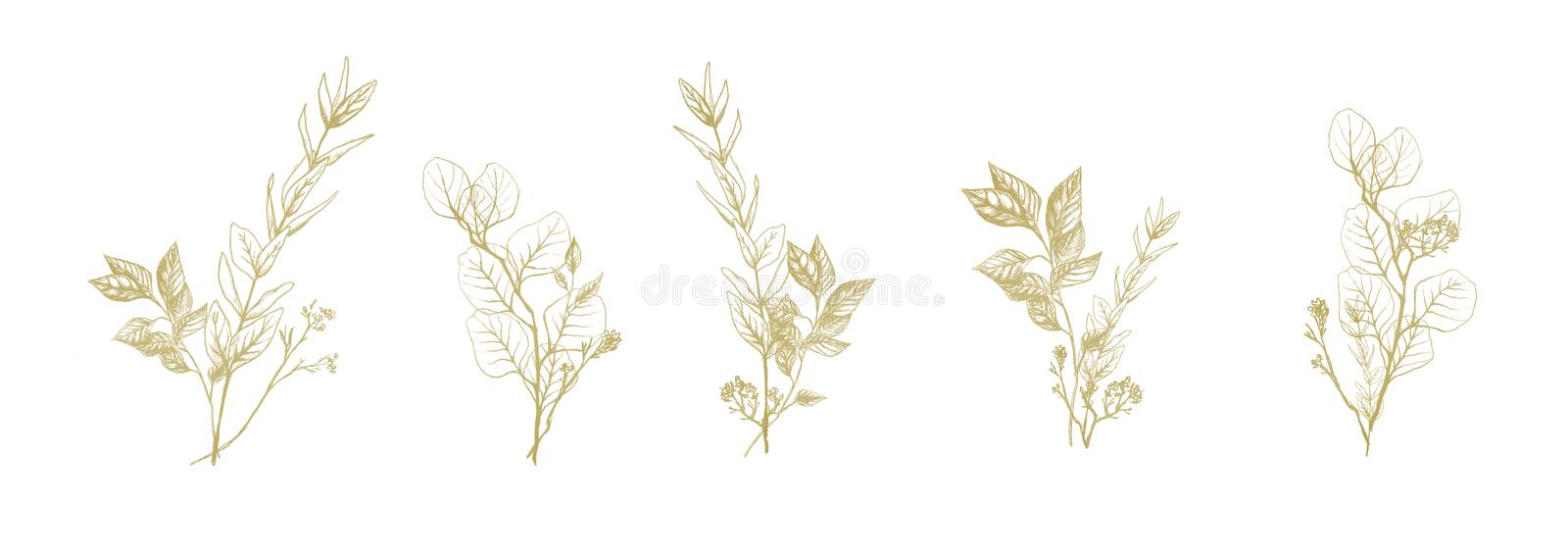 Set of golden floral compositions stock images
