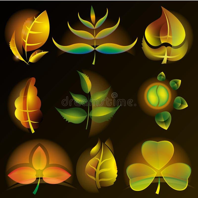 Set of gradien foliage. royalty free stock photo
