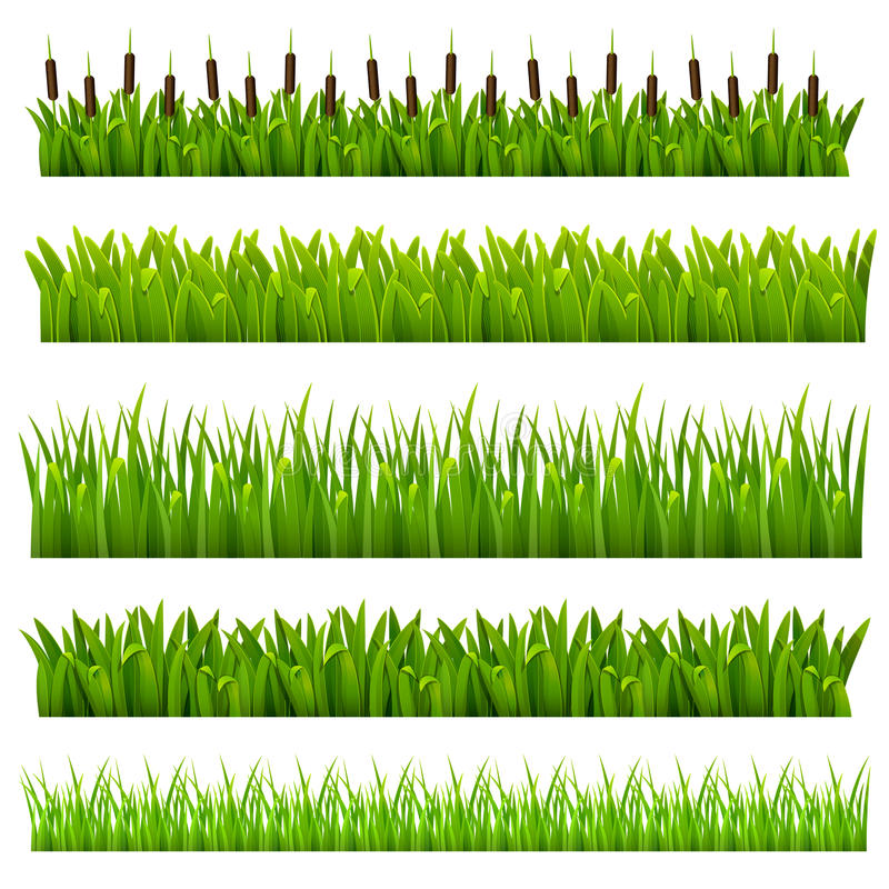 Set From Grass Stock Photo