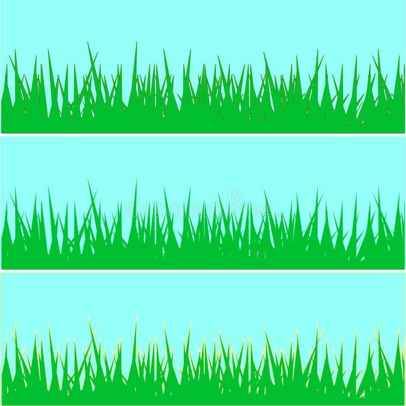 Set of grass. illustration. Set of grass background. illustration. different color royalty free illustration